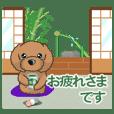 TOY POODLE トイプードル V9 (動く4 再販)