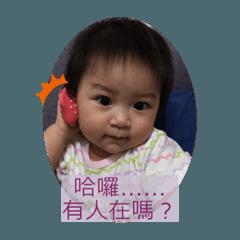菲菲小圖3.1