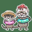 フェレット平八  夏 ferret heihachi