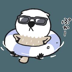 Mischievous sea otter 4