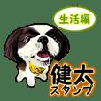 まゆ犬健太(生活編vol.1)