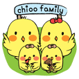 Chioo Family