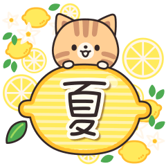 Tabby cat full of gentleness 2 (summer)