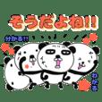 panda+4