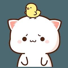 Peach Cat 8