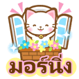 White&pink colored Cat1-Thai-