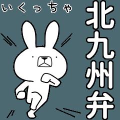 BIG Dialect rabbit [kitakyushu]