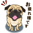 A sticker willingly. Pug