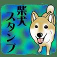 Shiba Inu Aruaru Sticker