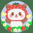 Strawberry panda