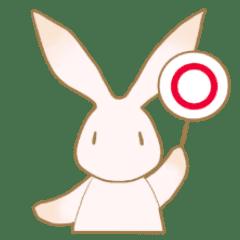 Not think Rabbit2