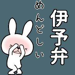 BIG Dialect rabbit [iyo]