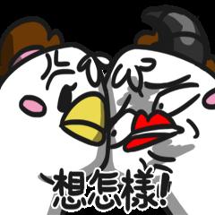 大陰盜百貨~白斬雞與烏骨雞