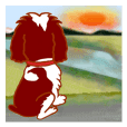 Holiday of the English Springer Spaniel
