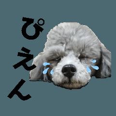 yumi_20200710104536
