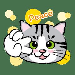 Nyankichi: For Daily Conversation Vol.1