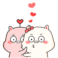 Happy daily life of two piglets
