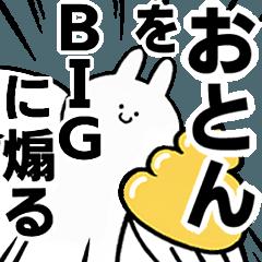 BIG Rabbits feeding [Oton]