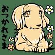 犬のお嬢様~その弐~