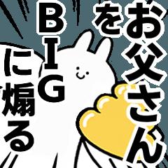 BIG Rabbits feeding [Oto-san]
