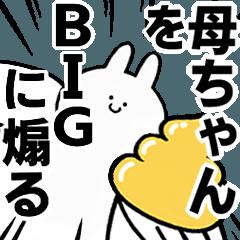 BIG Rabbits feeding [Kaa-cyan]
