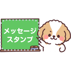fluffy shih tzu 3set message