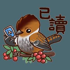 Mommy's Birdies