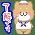 Moving Mofumofu Shiba Inu summer