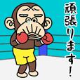 イラッと★お猿さん 13