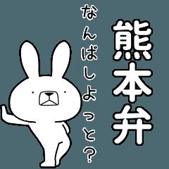 BIG Dialect rabbit [kumamoto]