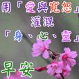 長輩圖-常用問候語 7