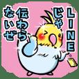 素敵トーク☆インコ兄さん 2