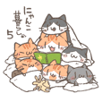 Nyanko life with Niko & Gure 5