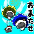 Everyday of sheep