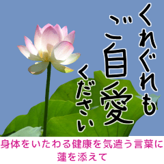 Add lotus to the words care for body