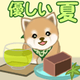 Puppy of Mameshiba greets 5