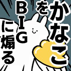 BIG Rabbits feeding [Kanako]