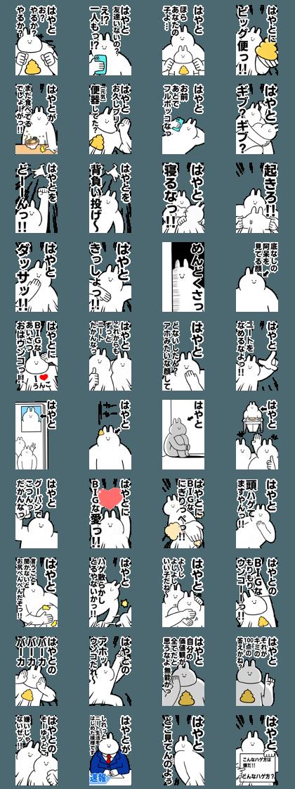 BIG Rabbits feediing [Hayato]
