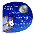 White Cat Yuzu Chan`s spring and summer
