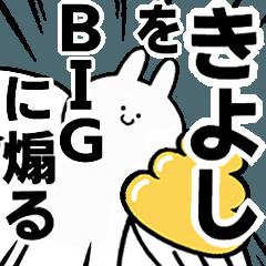 BIG Rabbits feeding [Kiyoshi]