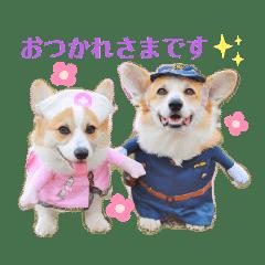 ラテ&マフィン♡コーギー姉妹スタンプ