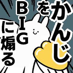 BIG Rabbits feeding [Kanji]
