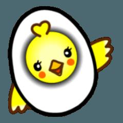 A chick was born