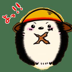 【ONE PIECE】ワンピハリー第1弾