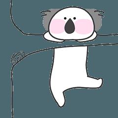 Koala on the tree, kokoal (english)