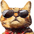 悪山ばるぞうのリアルちっくな猫スタンプ 2