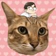 Cat Mi's daily life