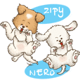 Zipy & Nero (in Daily Life)