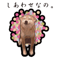 Shiba Inu Mame -Superrealism Edition-