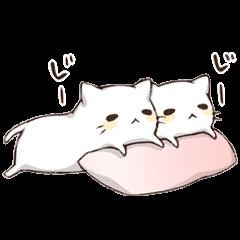 Pillow & Cat  2